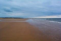 Langer sandiger Strand und Wald im Abstand, Nordmeer, Holkham-Strand, Vereinigtes Königreich Stockbild