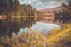 Langer See, Adirondacks, NY, im Fall umgeben durch Laub lizenzfreies stockbild