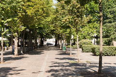 Langer Weg im Park im Sommer Stockbild