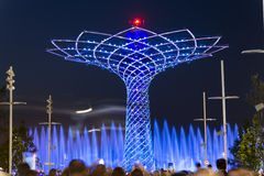 Langes Belichtungsnachtfoto des schönen Lichtes und Wasser stellt vom Baum des Lebens dar Lizenzfreie Stockbilder