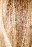 Langes blondes Haar als Hintergrund Stockfoto
