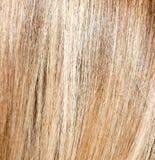Langes blondes Haar als Hintergrund Lizenzfreies Stockbild