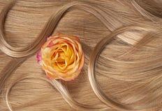 Langes blondes menschliches glänzendes Haar mit einer Rose Lizenzfreie Stockfotos