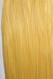 Langes goldenes blondes Haar Stockbilder
