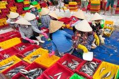 LANGES HAI, VUNG TAU, VIETNAM - 3. JULI 2016: Fischverkäufer in langem Hai-Markt bereiten Meeresfisch für den Morgenmarkt vor Stockbild