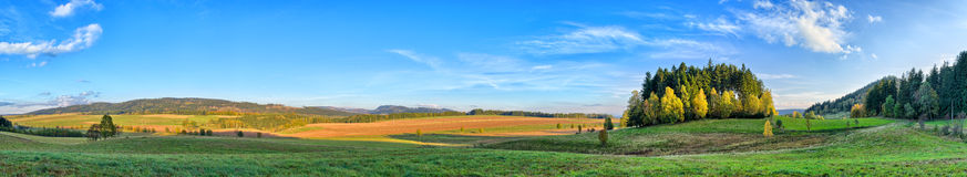 Langes Panorama mit wenigem Wald Lizenzfreies Stockbild