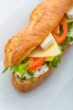 Langes Stangenbrot mit Tofu, Käse, Tomaten und Kopfsalat auf weißer Platte Stockbild