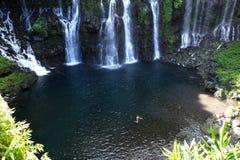 Langevin cade, La Reunion Island, indiano Oean Immagine Stock