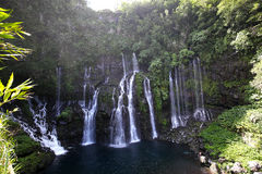 Langevin cade, La Reunion Island, indiano Oean Immagine Stock Libera da Diritti