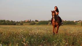 Langhaarige Reiterin auf dem Sommergebiet stock video