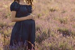 Langhaarige Stellung der schwangeren Frau an einem sonnigen Tag auf einem Lavendelgebiet mit einem Blumenstrauß des Lavendels lizenzfreies stockbild
