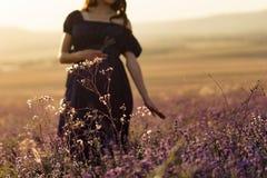 Langharige zwangere vrouw die zich op een zonnige dag op een lavendelgebied bevinden met een boeket van lavendel royalty-vrije stock afbeelding