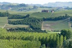 Langhe农业风景,山麓,意大利 库存照片