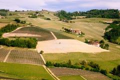 Langhe葡萄园环境美化 ?? 在巴罗洛,山麓,意大利,联合国科教文组织遗产附近的葡萄栽培 Dolcetto,Barbaresco胜利 免版税库存照片