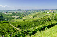Langhe, λοφώδης περιοχή κρασιού Piedmont, Ιταλία Στοκ φωτογραφία με δικαίωμα ελεύθερης χρήσης