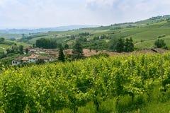 Langhe (Пьемонт, Италия) стоковое фото