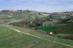 Langhe Obrazy Royalty Free