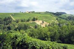 Langhe, Barolo vineyards summer panorama. Color image Stock Image
