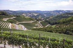 Langhe, Barolo vineyards summer panorama. Color image Stock Photo