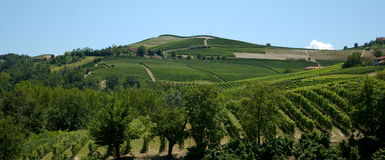 Langhe hills - Colline in Langa Stock Images