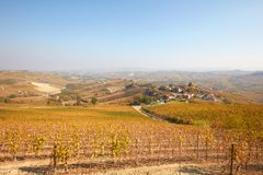 Langhe hills view, vineyards in autumn with yellow leaves Royalty Free Stock Images