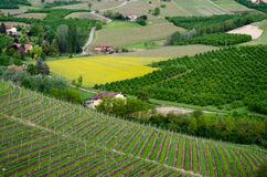 Langhe, hilly wine region in Piedmont Royalty Free Stock Photography