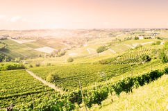 Langhe, hilly wine region in Piedmont, Italy Royalty Free Stock Photography
