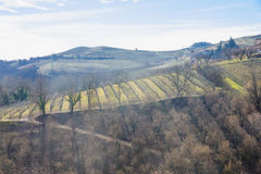 Langhe Royalty Free Stock Photos