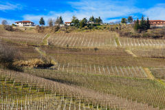 Langhe Stock Photography