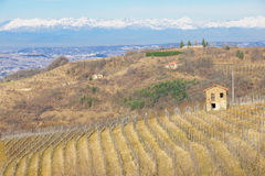 Langhe Stock Images