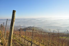 Langhe and Roero hills, Piemonte, Italy. South Piemonte hills (Piedmont): Italian Barolo vineyard landscape by sunrise, Autumn mists and morning fog. Langhe and stock images