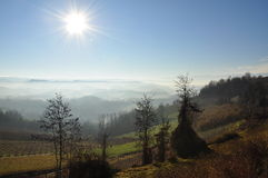Langhe and Roero hills, Piemonte, Italy. South Piemonte (Piedmont): Italian hilly landscape by sunrise, Autumn mists and morning fog. Langhe and Roero, Italy stock photos