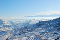 Langhe with snow Stock Images