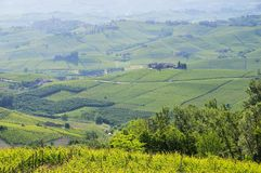 Langhe vineards and villages Stock Images