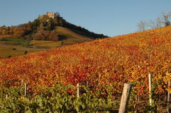 Langhe vineyards with castle. This is a world well known place for wine production, in Piedmont, Italy. Red autumn vineyards with castle stock photography