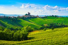 Langhe vineyards sunset panorama, Serralunga Alba, Piedmont, Ita Stock Images