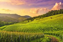 Langhe vineyards view, Barolo and La Morra, Piedmont, Italy Europe royalty free stock photo