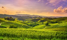 Langhe vineyards view, Castiglione Falletto and La Morra, Piedmont, Italy Europe stock photography