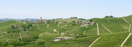 Langhe, wijngaarden Royalty-vrije Stock Afbeeldingen