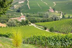 Langhe wine district, Italy Stock Image