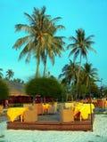 Langkawi. Hohe Palmen über Freiluftgaststätte Lizenzfreies Stockfoto