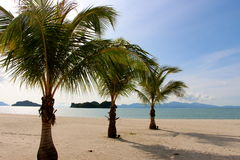 Langkawi island Malaysia deserted beach. Hammock swung royalty free stock images