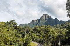 Langkawi road Stock Photography