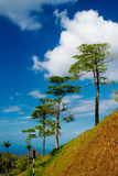 Langkawi sea hill sky. Langkawi sea blue sky fresh air tree Royalty Free Stock Image