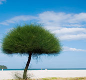 Langkawi sea hill sky. Langkawi sea blue sky fresh air tree Royalty Free Stock Photo