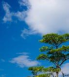 Langkawi-Seehügelhimmel lizenzfreies stockbild