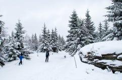 Langläufer zwei in Jizera-Bergen lizenzfreies stockbild