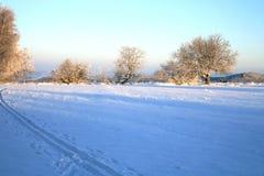 Langlaufloipe und Winterwiese lizenzfreies stockbild