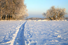 Langlaufloipe und Winterwiese stockfoto