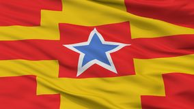 Langley miasta flaga, Kanada, kolumbia brytyjska prowincja, zbliżenie widok Ilustracja Wektor